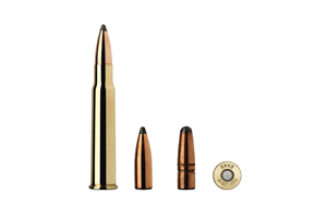 Munition Sako 8x57IRS