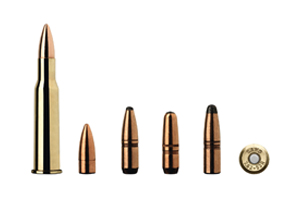 Munition Sako 7.62x53R