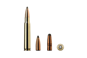 Munition Sako 8x57IS