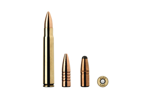 Munition Sako 9.3x62