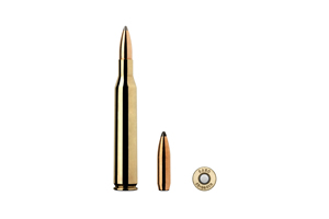 Munition Sako 25-06 Rem